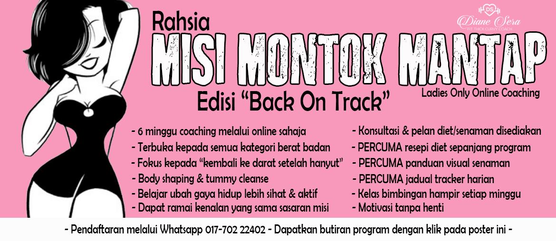 Rahsia Misi Montok Mantap (6 Minggu Online Coaching)